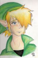 Link by Silver-the-kid