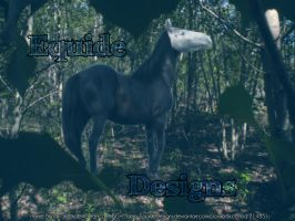 Equide Designs by EquideDesigns