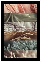 Winter Wallpaper Pack by solefield