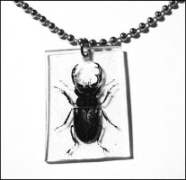 beetle__necklace by bleedsopretty