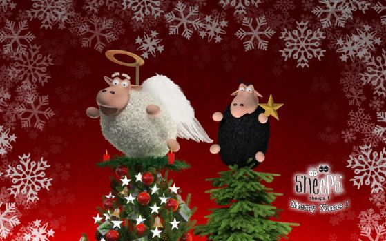 Sheeps Xmas 2009 by bsign