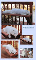 Discounted Arctic Fox Plush by MorRokko