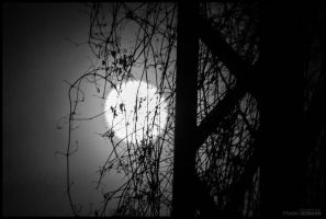 Moon by fti7
