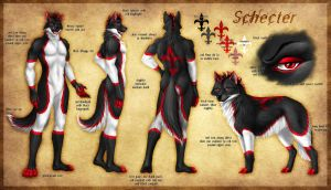 Commission - Schecter Reference Sheet by jocarra