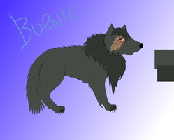 Burnic Reference Sheet by noss5