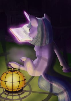 Book horse reading in dark by MasterVule