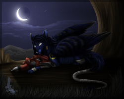 Night's sleep by Shadow--Twilight