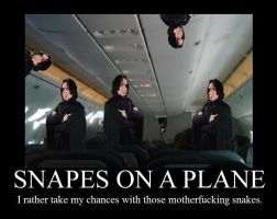 Snapes on a plane by iJustPokedYou