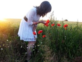 Poppies by pretty-in-black-750