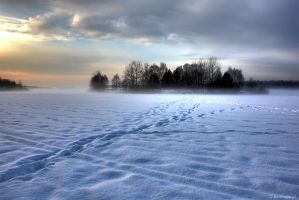 mysterious fog - Tychy by shade-pl