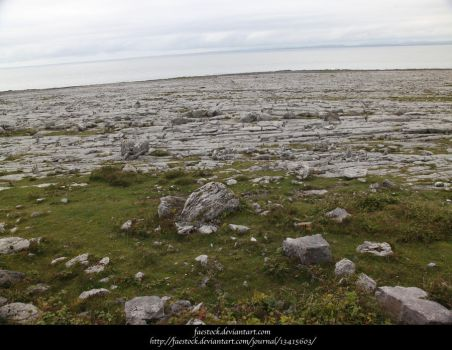 The Burren7 by faestock