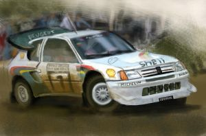 Peugeot 205 Rally by FCD94
