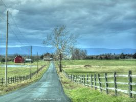 The Belle Grove Plantation by jim88bro