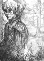 Forest Shaman by VEPSART