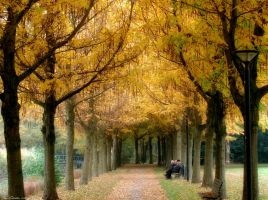 Autumn Park by JacqChristiaan