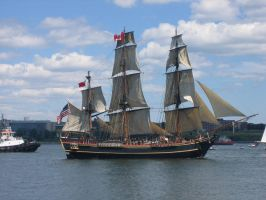 Tall Ships - HMS Bounty by Aeltari