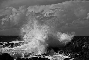 Sea spray BW by DostorJ