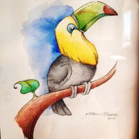 Toucan by PinkBunnie