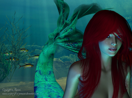 Ariel - The Little Mermaid by corpse-of-a-princess