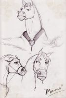 Maximus Sketches by FreeCalippo
