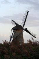 -Wind-Mill? by Lill-Rain
