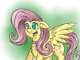 fluttershy 3 by shinkuma