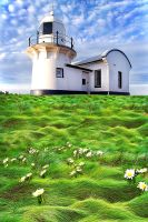 Tacking Point Lighthouse by BeauNestor