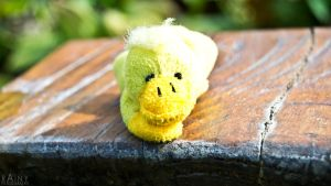 Ducky 3 by Rainyphoto