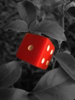 cube plant black and white by dukeofspade