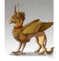 Copper the Gryphon by Bueshang