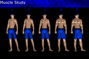 Muscle Study by JFG107plz