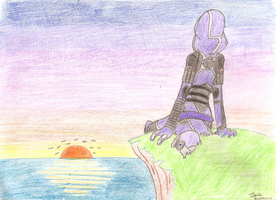 Tali Zorah at Sunset by Dattebayo681
