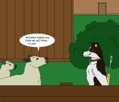 Border collie smarts by mearcu