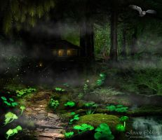 Magic Forest by jeroenpaint