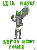 Li'll Nates Super Secret Pouch by Wedgie-Fox