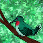 Daily draw #2- Befuddled Hummingbird by wolftail1999