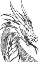 Dragon Head Side Profile by The-MuseDragon