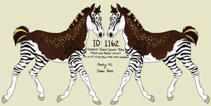 Foal ID: 1162 Design by Cougar28