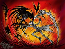 Madness Vs Insanity by RavenBlackCrow