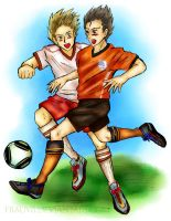 APH: WC2010-DenmarkNetherlands by FrauV8