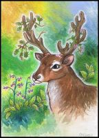 Samhain Stag by silverlode