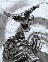 WOLVERINE vs SHREDDER by grandizer05