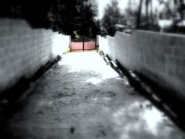 the white road by anupamas