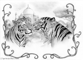 tiger_love_by_anatoliba by Anatoliba