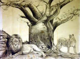Lion pair and Baobab Tree by hotwiar