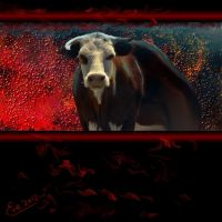 Furious Bull by TheGalleryOfEve