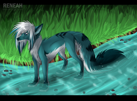 :Com: Water Feeling by whicray