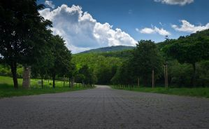 A Private Road by kalmarn