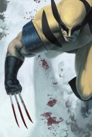 SSC - wolverine by anklesnsocks