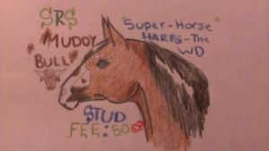 Muddy Bull stud info by OccasionalSuicide